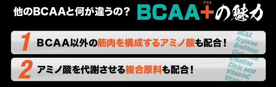 BCAAプラスは、BCAA以外の筋肉構成アミノ酸やビタミン群も配合!